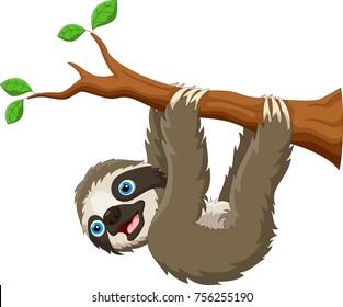 Cartoon cute sloth hanging on the tree