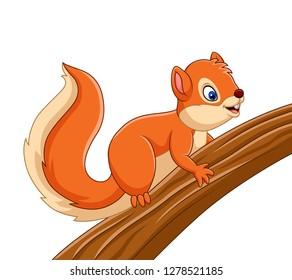 Cartoon cute squirrel on the tree