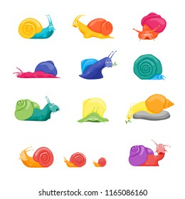 Cartoon Different Color Characters Funny Snails Set Concept Element Flat Design Style. Vector illustration of Expression Snail
