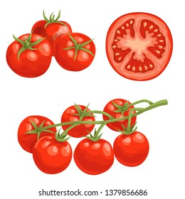 Cartoon different types tomatoes set. Red ripe vegetables isolated on white background. Group, slice and cherry tomatoes on branch. Vector illustrations.