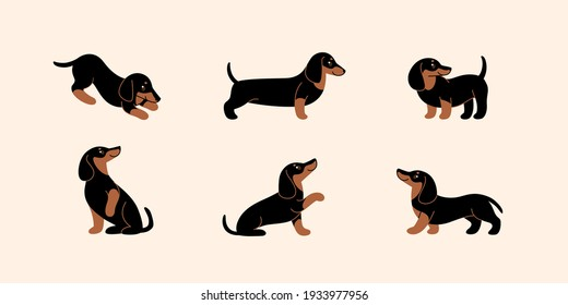 Cartoon dog icon set. Different poses of dachshund. Vector illustration for prints, clothing, packaging, stickers.