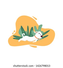 Cartoon Dog Runs along path against Background of vegetation with noises. Vector Illustration with place for Text.