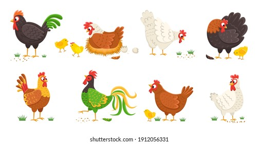 Cartoon domestic chicken. Funny different roosters and mother hens various breed with small chicks, colorful easter color birds collection, egg shell and nest. Cute farm animals vector isolated set