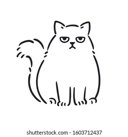 Cartoon drawing of grumpy looking fat cat. Funny annoyed white Persian cat, hand drawn sketch. Isolated vector clip art illustration.
