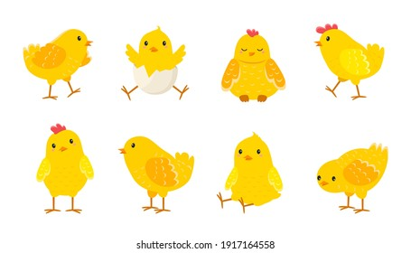 Cartoon Easter chicks. Cute baby farm birds with yellow feathers. Cheerful little chickens and roosters activities. Funny domestic animals hatched from eggs. Isolated newborn poultry, vector set