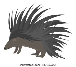 Cartoon echidna. Vector illustration of echidna. Drawing animal for children. Zoo for kids.