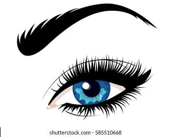 Cartoon female eye of blue color with eyebrow illustration.