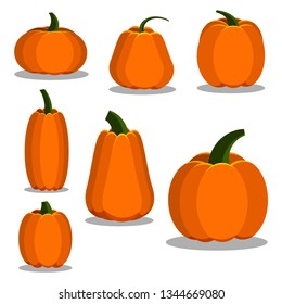Cartoon flat style colorful pumpkin icons set. Sign kit of halloween. Thanksgiving pictogram collection farm harvest, closeup squash isolated on white background. Vector simple vegetable illustration