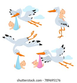 Cartoon flying storks and stork birds carrying baby vector set. Stork bird with baby, flying and carrying in beak illustration