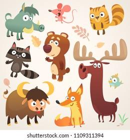 Cartoon forest animal characters.Vector illustration. Big set of cartoon forest animals illustration. Squirrel, mouse, raccoon, boar, fox, buffalo, bear, moose, bird. Isolated