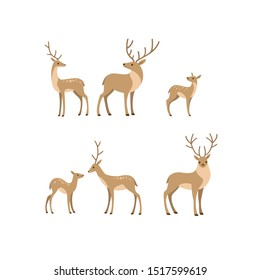 Cartoon forest animal line icon. Cute animals icons set - deer, fallow deer, fawn. Childish vector print for nursery, kids apparel, poster, postcard, pattern.