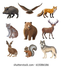 Cartoon forest animals set with wild boar owl fox lynx bear deer hair squirrel wolf isolated vector illustration