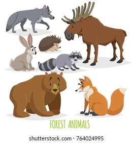 Cartoon forest animals set. Wolf, hedgehog, moose, hare, raccoon, bear and fox. Funny comic creature collection. Vector educational illstrations.