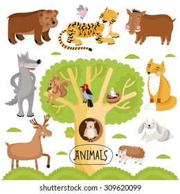 Cartoon forest animals vector characters on white background. Bears, tigers, wolves, jack, fox, moose, owl and others. Funny wild animals collection.