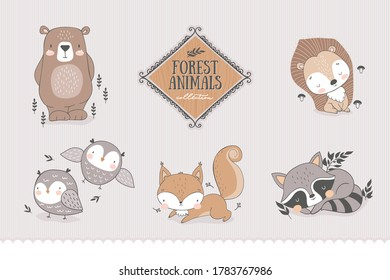 Cartoon forest characters collection. Animal cute baby owl, fox, bear, raccoon, hedgehog. Doodle stickers. Hand drawn shirt print design vector illustration.