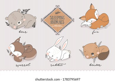 Cartoon forest characters collection. Sleeping Animal cute baby teddy bear, fox, squirrel, bunny, beaver. Doodle stickers. Hand drawn shirt print design vector illustration.