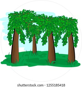 Cartoon forest vector in round frame isolated on white background.