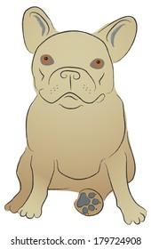 Cartoon French Bulldog in a seated position looking up