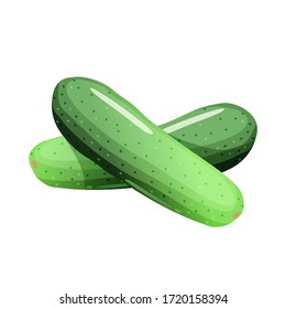 Cartoon fresh cucumber on a white background, vector icon.
