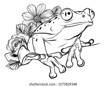 A cartoon frog mascot character pointing vector illustration