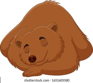 Cartoon funny brown bear sleeping