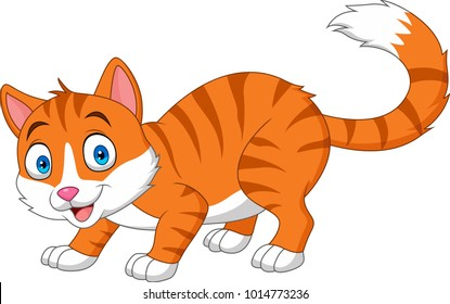 Cartoon funny cat isolated on white background