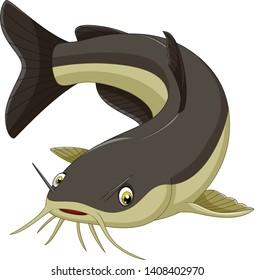 Cartoon funny catfish on white background