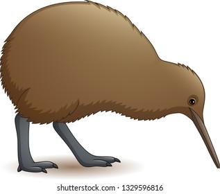Cartoon funny kiwi bird