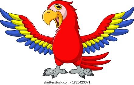 Cartoon funny macaw isolated on white background