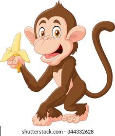 Cartoon funny monkey holding banana isolated on white background