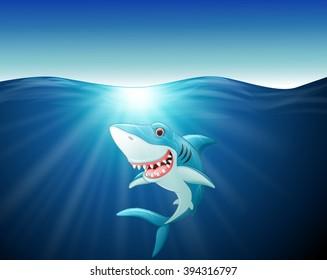 Cartoon funny shark on the sea