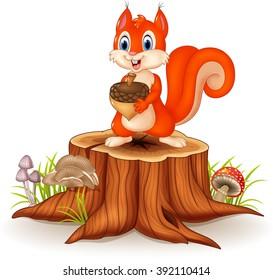 Cartoon funny squirrel holding pine cone on tree stump