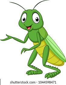 cartoon grasshopper isolated on white background