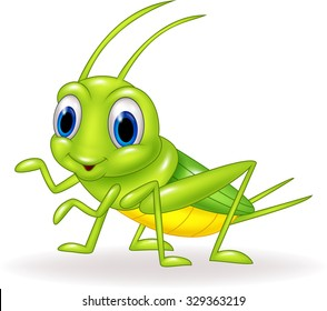 Cartoon green cricket isolated on white background