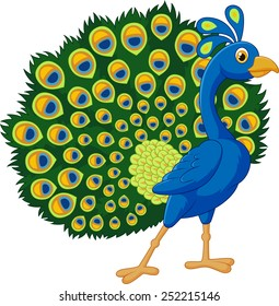 peacock cartoon images stock photos vectors shutterstock rh shutterstock com peacock feather images clip art peacock clipart images