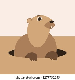 cartoon groundhog, vector illustration,  flat style, front view