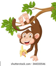Cartoon happy monkey hanging and holding banana