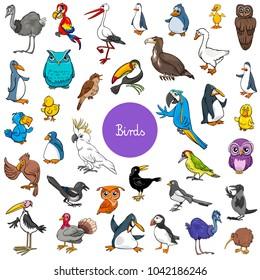 Cartoon Illustration of Birds Animal Characters Big Set