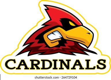 A cartoon illustration of a cardinal mascot head.