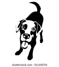cartoon illustration of a labrador retriever dog