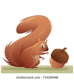Cartoon illustration of a red squirel looking at us while trying to reach an acorn vector illustration isolated in white background
