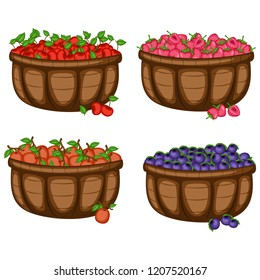 Cartoon Illustration Set of Four Baskets with Different Berries. Berries in Big Brown Containers Vectors Isolated on White Background. Cherry, Strawberry, Ximenia, Huckleberry