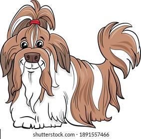 Cartoon illustration of Shih Tzu purebred dog animal character