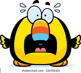 A cartoon illustration of a toucan looking scared.