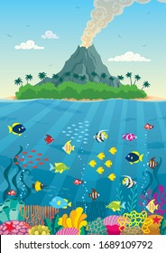 Cartoon illustration of underwater world with corals and fish, and tropical island with volcano nearby.