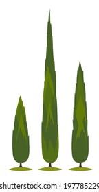 Cartoon italian cypress tree on transparent background vector