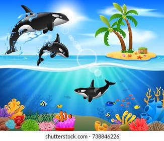 Cartoon killer whale jumping in blue ocean background. vector illustration