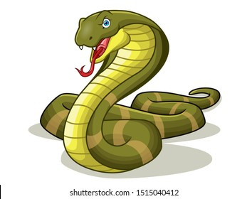 A cartoon of king cobra or venomous snake angry. vector illustration .