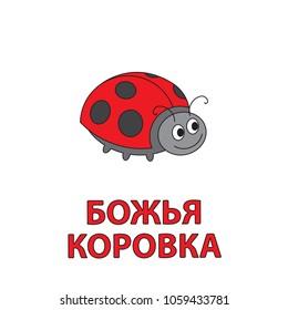 Cartoon ladybug flashcard. Vector illustration for children education with Ladybug text in Russian language