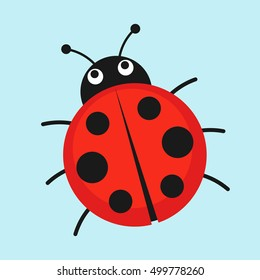 Cartoon ladybug vector illustration. Cute red ladybug isolated in a flat style.